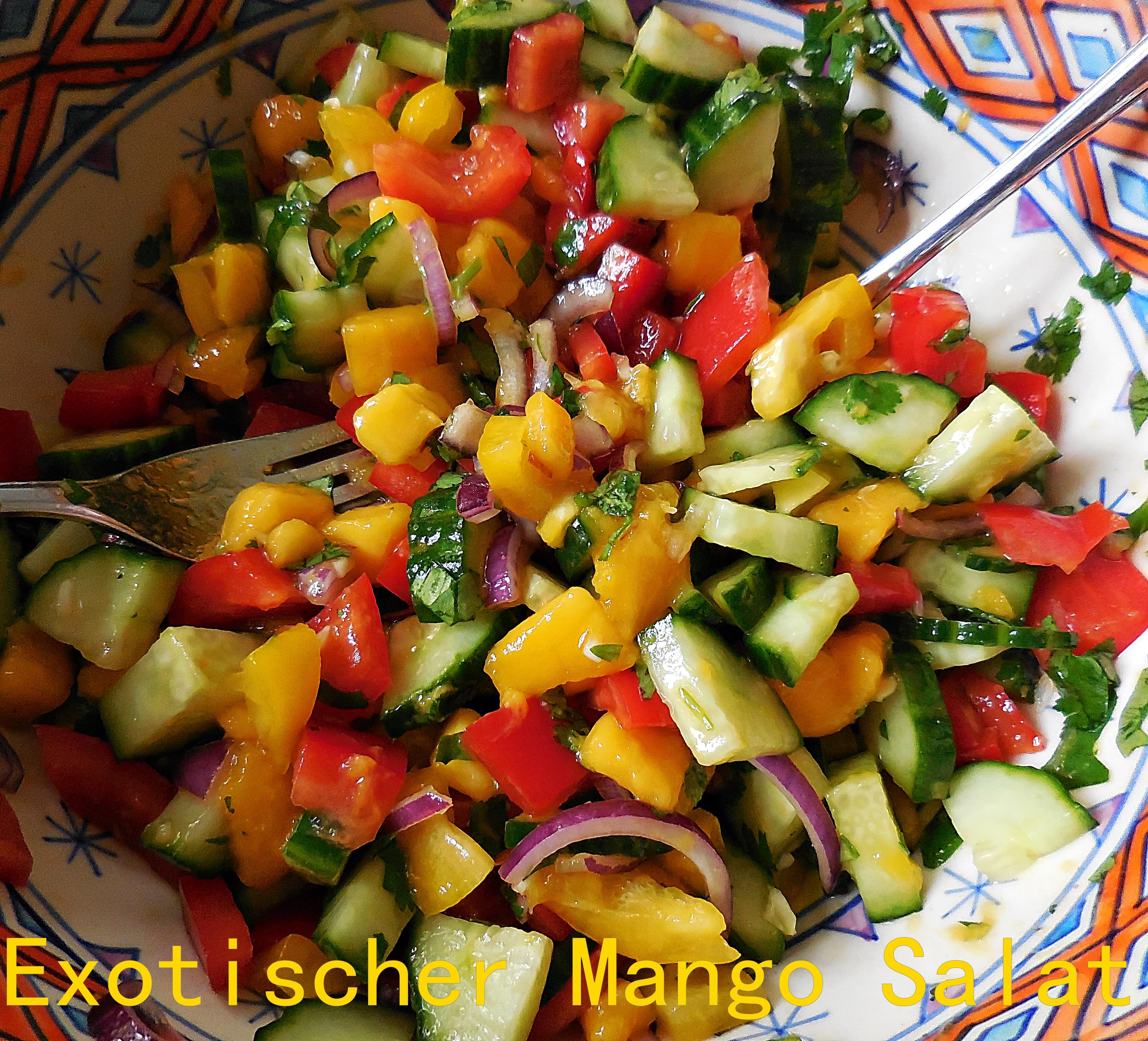 exotischer mangosalat
